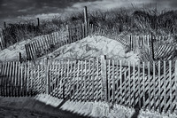 Beach Fence BW